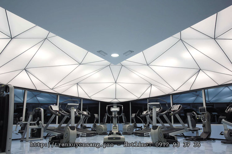 tran-tao-dang-3d-dps-hpro1